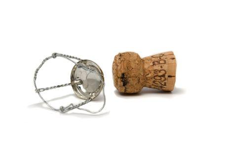 champagne-cork2.jpg